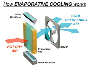 A graphic showing how evaporative cooling works