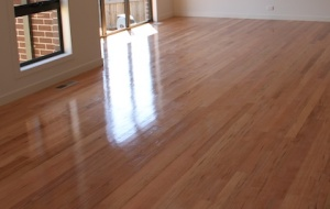 A polished Tasmanian Oak hardwood floor
